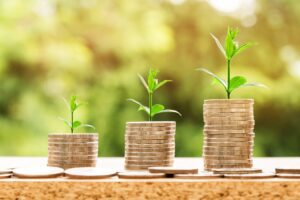 Global accountancy bodies come together for net zero